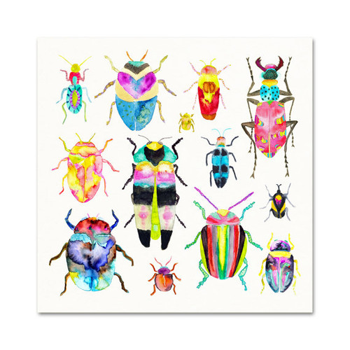 "Beetle Collection Art Print 5"" x 7"""
