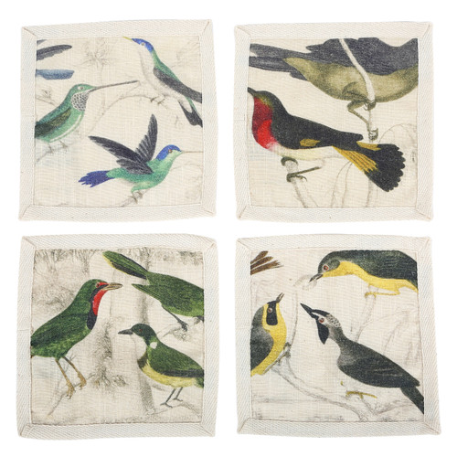 Ornithology Bird Cocktail Napkins (Set of 4)