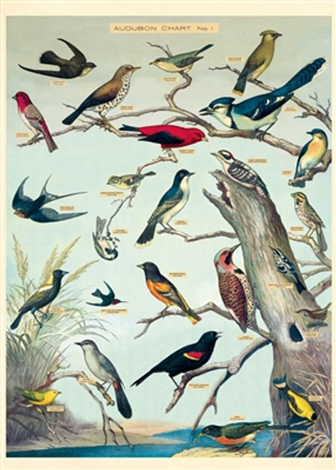 "Audubon Birds Wrap Sheet 20"" x 28"""