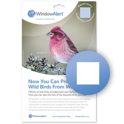 Window Alert Bird Strike Window Decals in CLASSIC SQUARE