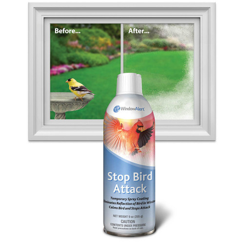 Window Alert Stop Bird Attack Strike Spray