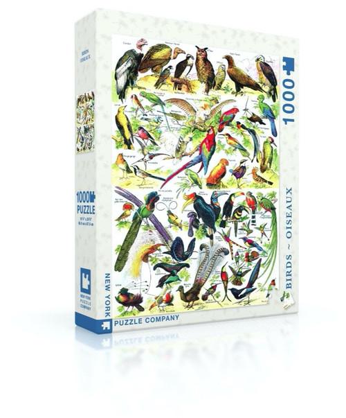 Birds Puzzle Oiseaux