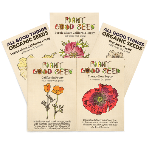 Plant Good Seed Assorted Seed Packs (Assorted Varieties, Mostly Organic - see descriptions)