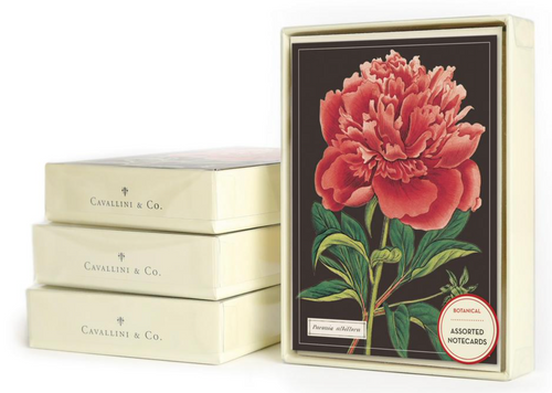 Botanical Boxed Greeting Cards (Set of 10)