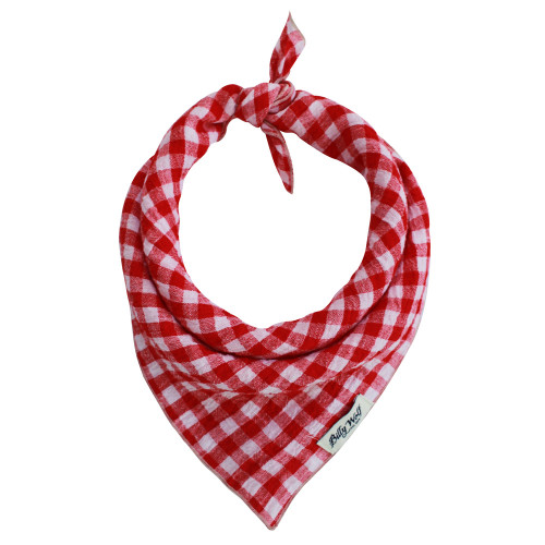 Shelby Gingham Bandana in Small