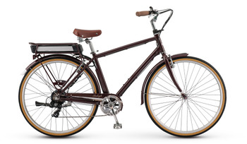 Raleigh Electric Superbe iE