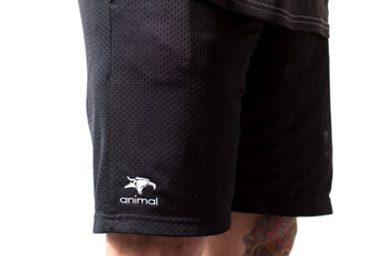 Animal champion shorts