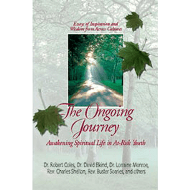 Book Cover of The Ongoing Journey