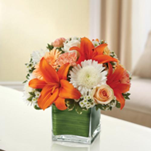 Peach, Orange & White Healing Tears