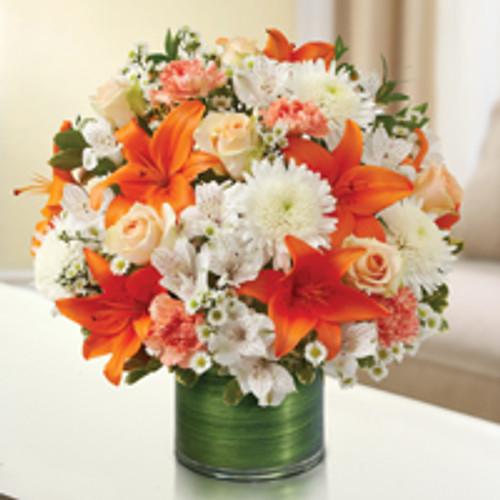 Peach, Orange & White Cherished Memories