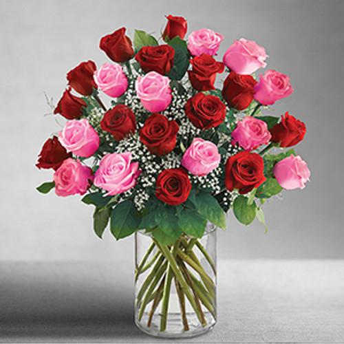 Ultimate Elegance 2 Dozen Long Stem Pink and Red Roses