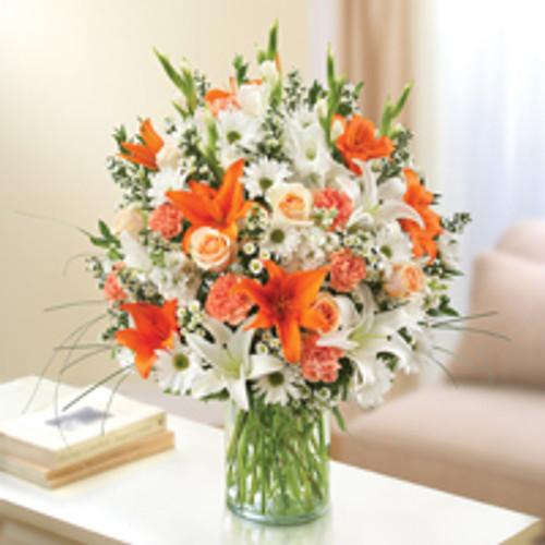 Peach, Orange & White Sincerest Sorrow