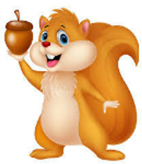 Squirrel Balls ELiquid | Wholesale | Vape Junkie Ejuice - Our Squirrel Balls eliquid is a blissfully sinful mix of creams and nuts. The primary flavor in this blend is hazelnut complimented with butter pecan and sweet cream. It also features a smooth and sweet Bavarian cream, making this ejuice amazingly decadent.