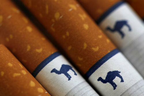 Desert Camel Tobacco