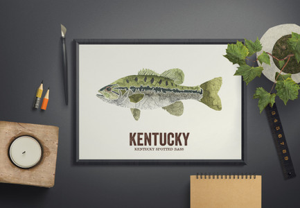 Kentucky State Fish, Map art-Spotted Bass