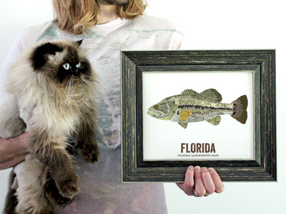 Florida State Fish, Map art - Largemouth Bass