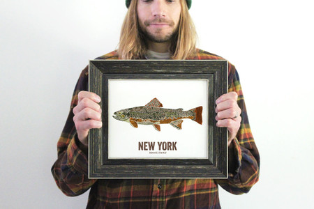 New York State Fish, Map art - Brook Trout