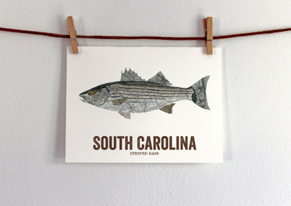 South Carolina State Fish Art - Striped Bass
