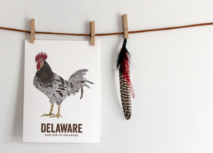 Delaware State Bird, Map prints - Blue Hen of Delaware