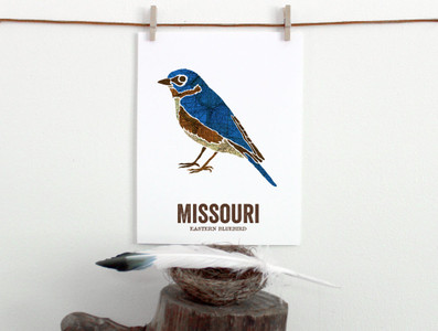 Missouri State Bird, Map prints - EASTERN BLUEBIRD
