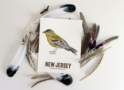 New Jersey art, Vintage Map prints-AMERICAN GOLDFINCH