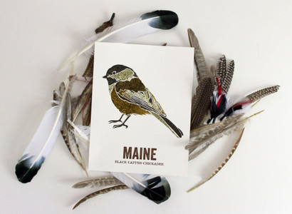 Maine State Bird, Map prints - BLACK CAPPED CHICKADEE