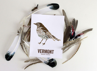 Vermont State Bird,Map prints - Hermit Thrush