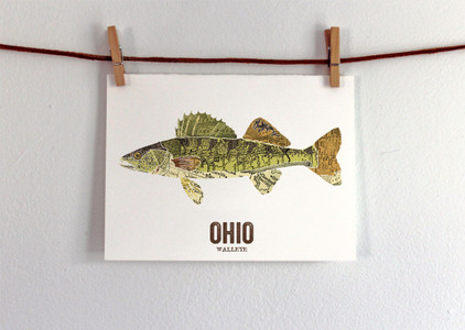 Ohio State Fish, Map art - Walleye