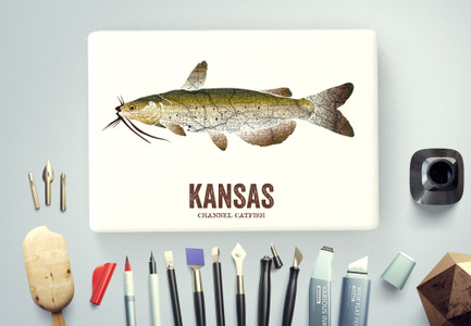 Kansas State Fish, Map art - Channel Catfish