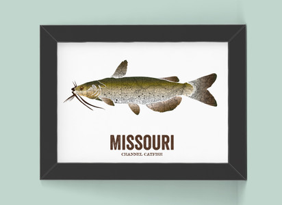 Missouri State Fish, Map art - Channel Catfish