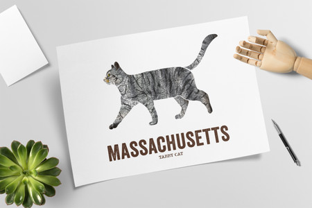 Massachusetts state cat art, Map prints - Tabby Cat