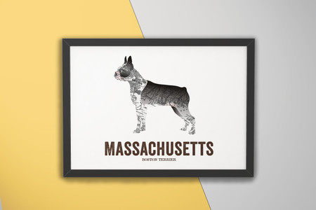 Massachusetts State Dog, Dog print - Boston Terrier
