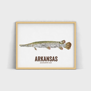 Arkansas State Fish, Map art - Alligator Gar