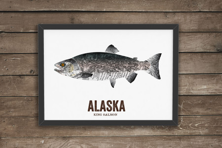 Alaska State Fish, Map art - King Salmon