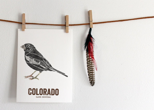 Colorado state bird art - LARK BUNTING