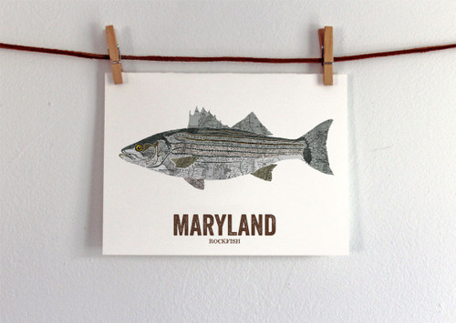 Maryland State Fish, Map art-Rockfish