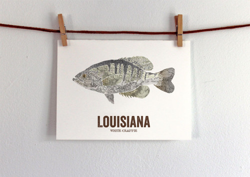 Louisiana State Fish, Map art- White Crappie