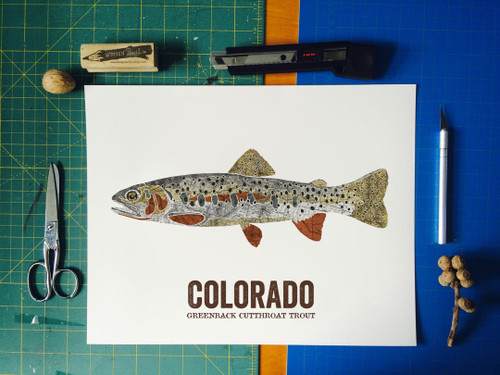 Colorado State Fish, Map art - Greenback Cutthroat Trout