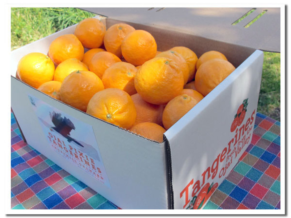Ojai Pixie Tangerines from Churchill Orchard in our 9-lb box - our Pixies are certified organic.