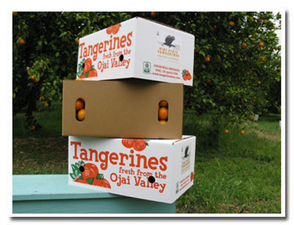 Our certified organic Ojai Pixie Tangerines are available in 25-lb cartons.