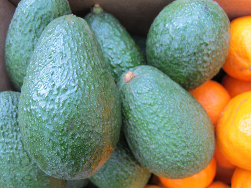 The Ojai Pixie Party box - 3 lbs Hass avocados and 6 lbs of Ojai PIxies - beautiful fruit, eh?