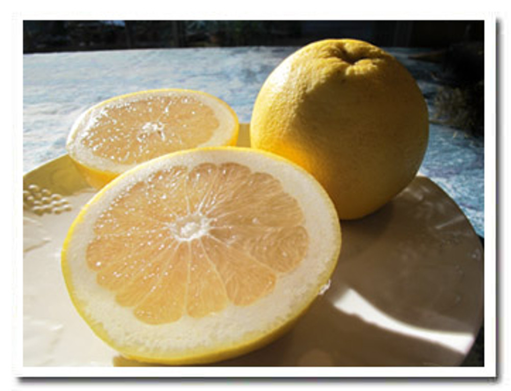 Oro Blanco is a fabulous California hybrid grapefruit - like grapefruit with the sugar built in.
