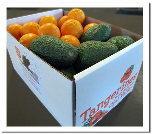 The Ojai Pixie Party box - 3 lbs Hass avocados and 6 lbs of Ojai PIxies - all orchard direct and certified organic!