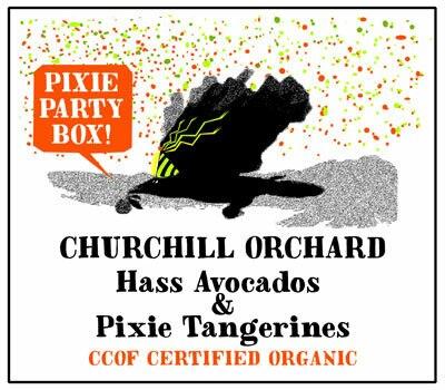 pixie-party-box-store-50709.1616183750.600.600.jpg