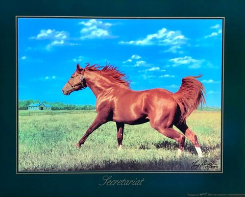 Secretariat in the Field 20x16 $35.00