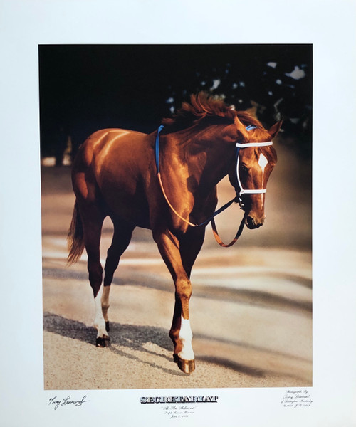 "Secretariat ""At The Belmont"" 1973 Triple Crown Winner"