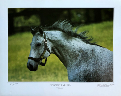 "20""W x 16""H signed and numbered by Photographer:  James Archambeault"
