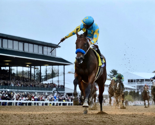 American Pharoah winning the 2015 Breeders Cup at Keeneland Race Course in Lexington, Kentucky