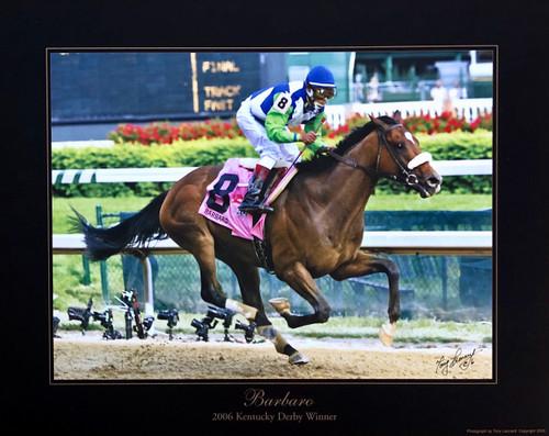 Barbaro 2006 Kentucky Derby Winner