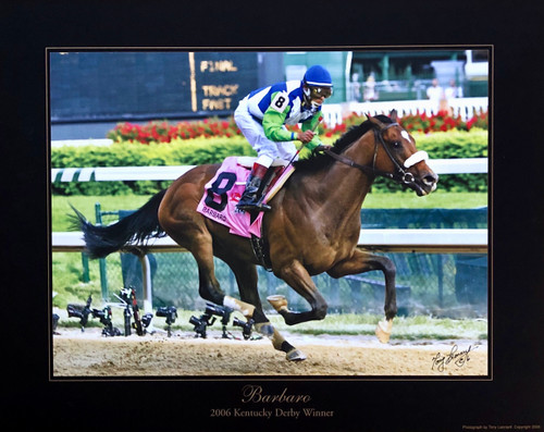 Barbaro 2006 Kentucky Derby Winner